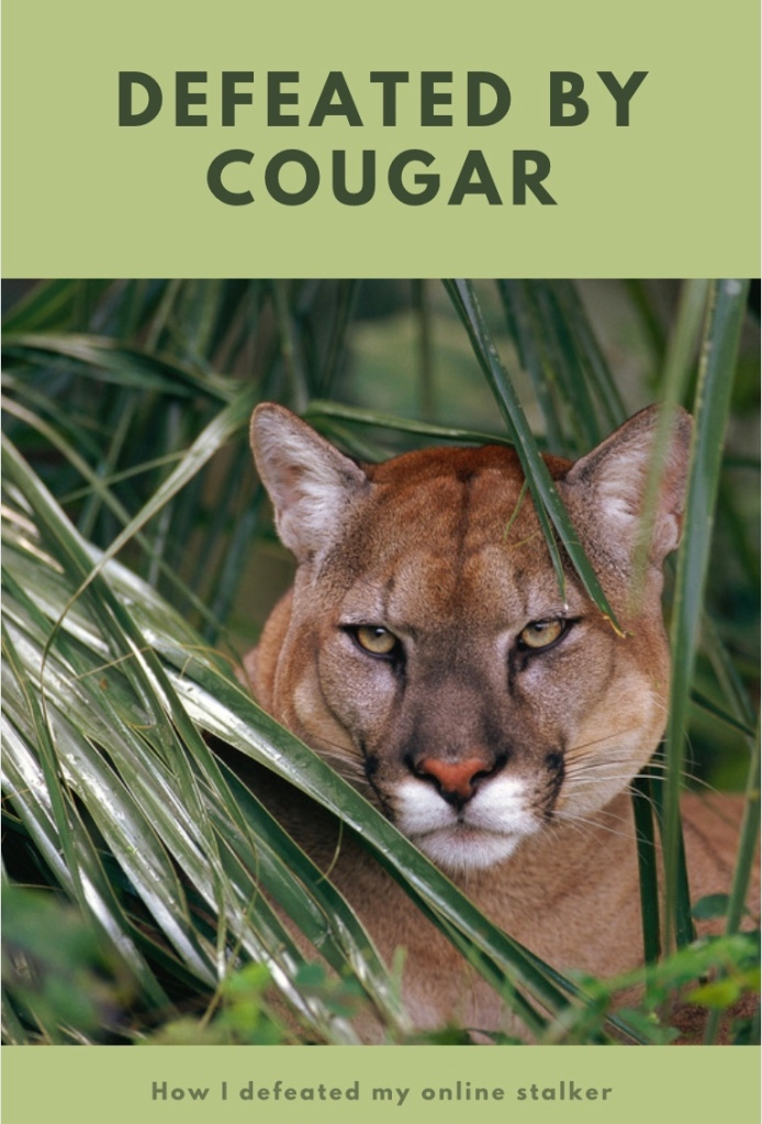 Cougar in attack mode